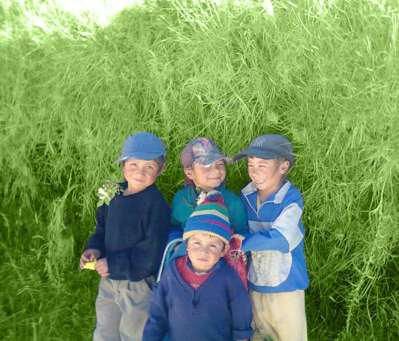 foto_niños_edit